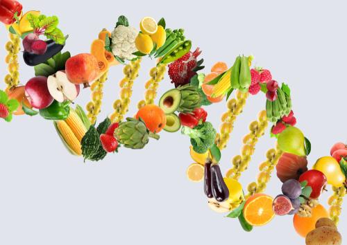 Nutrigenomics, Nutrigenomics Graduate Certificate, Nutrigenomics Certificate